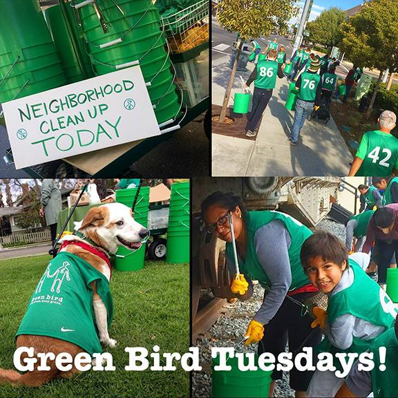 Green Bird Tuesday in Little People's Park画像